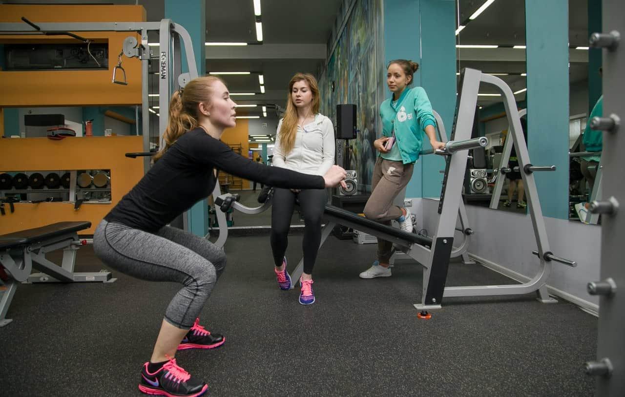 Как составить программу тренировок для зала: правила и принципы составления тренировочных программ для самостоятельных тренировок в тренажерном зале