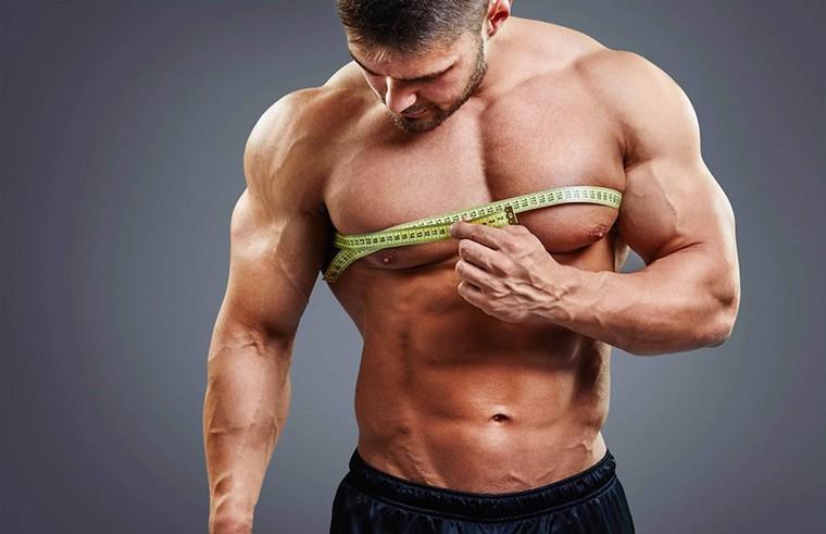 Через сколько сдуваются мышцы без тренировок